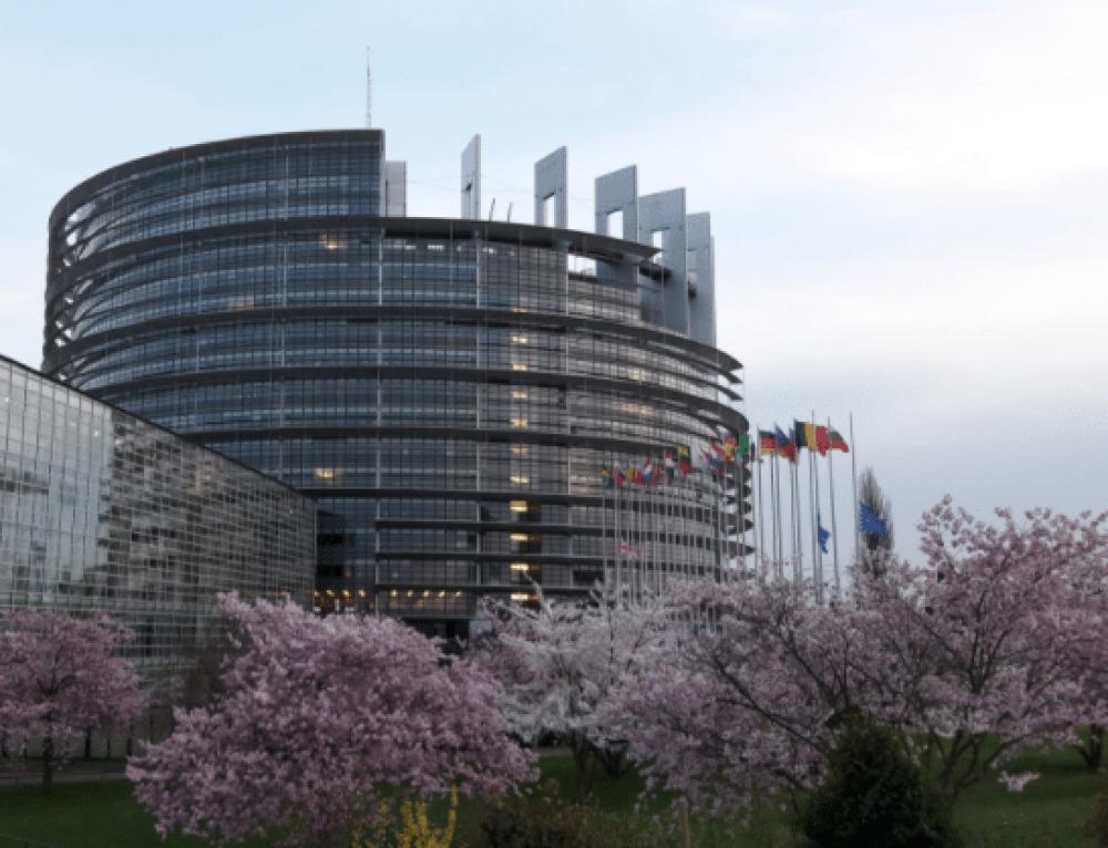 CONTENT: L'expérience d'assistant parlementaire au Parlement européen